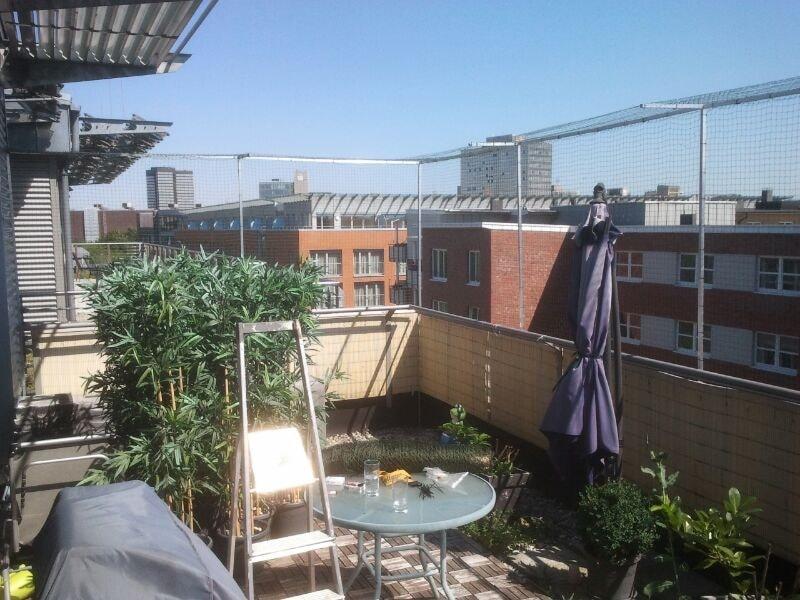 Katzennetz mit Überkletterschutz für Dachterrasse in Essen