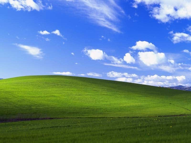 windows-xp-desktop-background-wallpaper-bliss-800x600