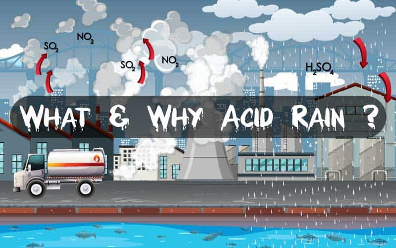 What is Acid Rain and why it occurs ?