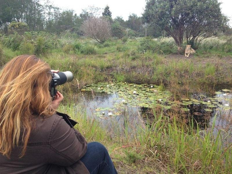 Wildlife photographer on a Tenikwa tour
