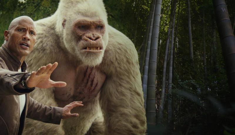 Dwayne Johnson's character Davis Okoye with gorilla George in New Line Cinema's action adventure 'Rampage,' which was partially filmed on the Brenau University campus. (Courtesy of Warner Bros. Pictures/Brenau photo illustration.)
