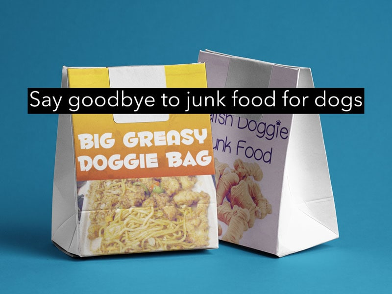 say goodbye to junk food for dogs