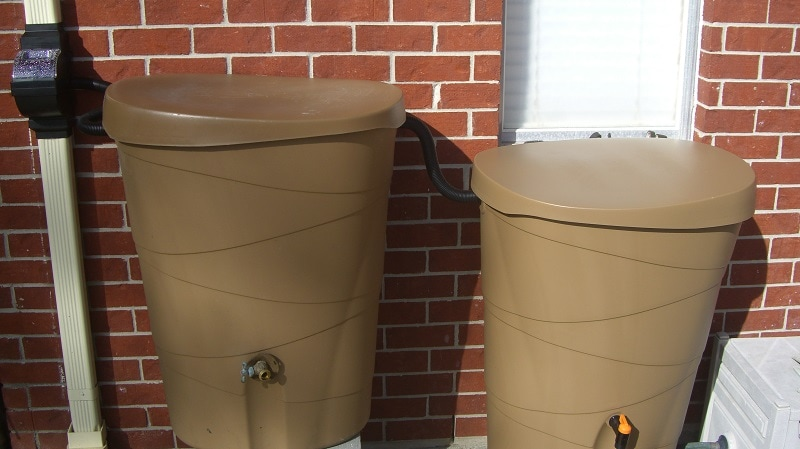 My rain barrel setup!