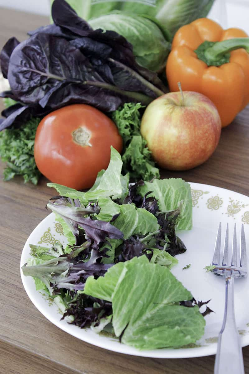 Healthy Eating Tips for Busy People