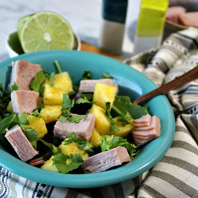ThisWeight Watchers Tropical Ham Saladis sosimple and only takes a few minutes to make.There is only 3 Weight Watchers FreestyleSmart Pointsin each serving!