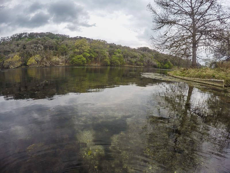 Spring Lake in San Marcos
