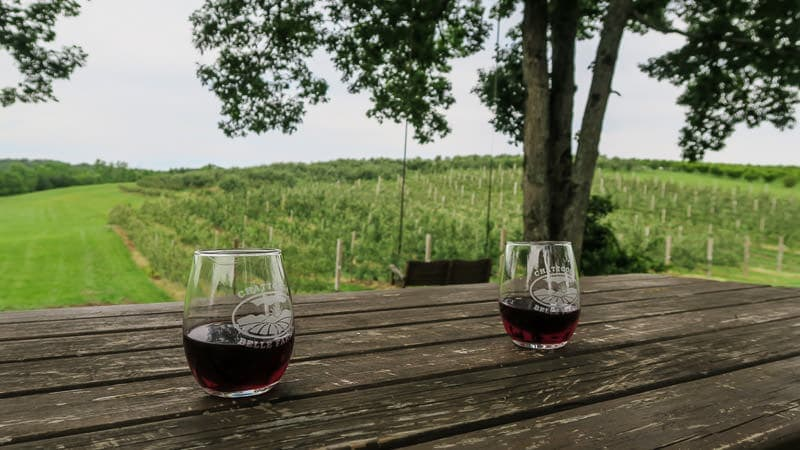 2 Glasses of wine on a picnic table overlooking some of the farm