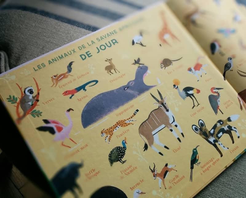 une-journee-livres-enfant-9