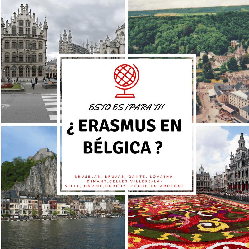 Erasmus en Bélgica