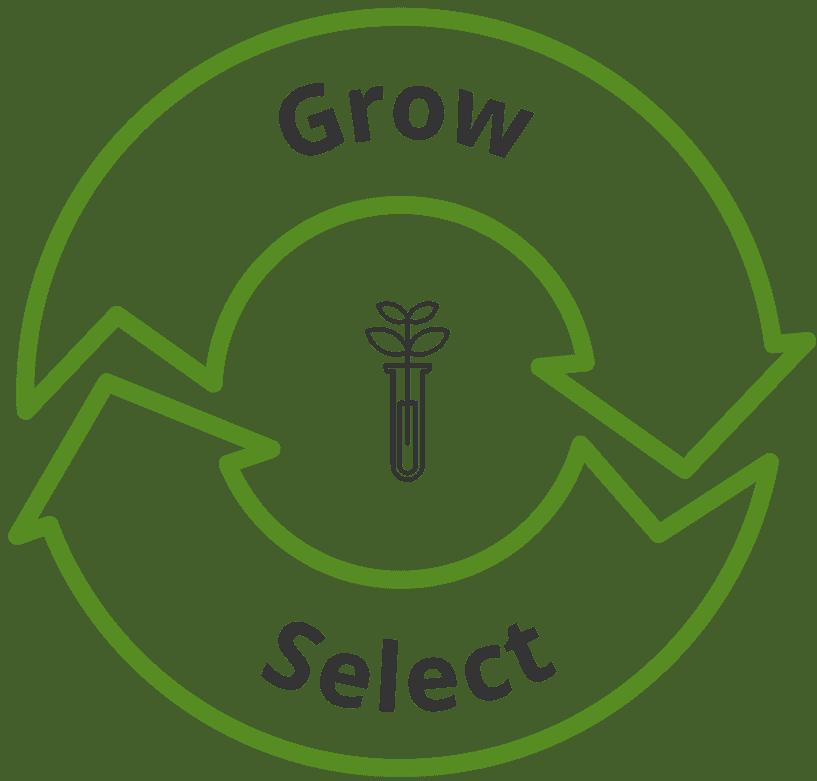 Grow and select