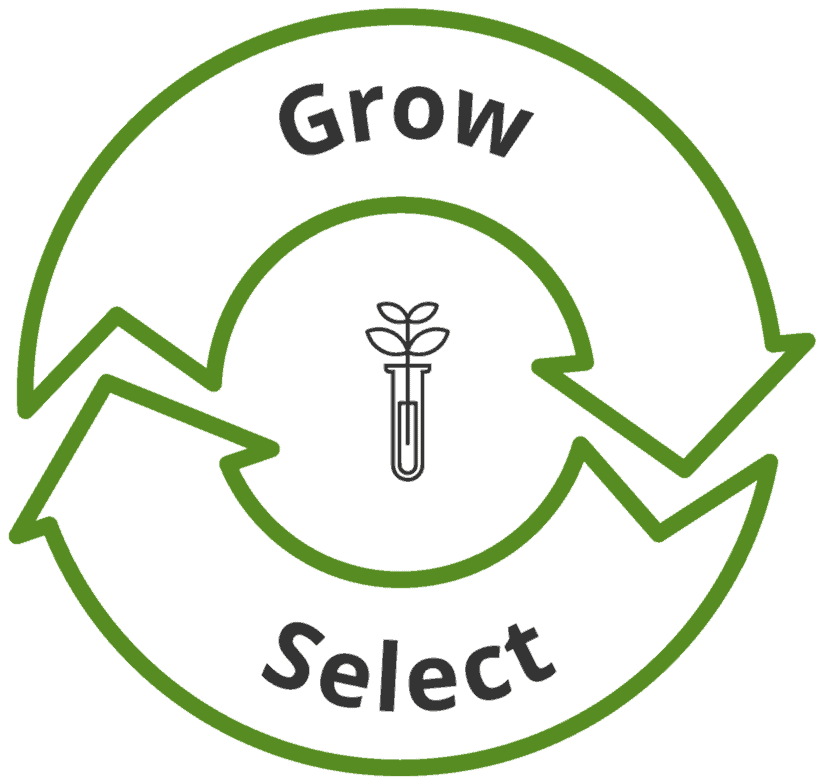 Grow and select