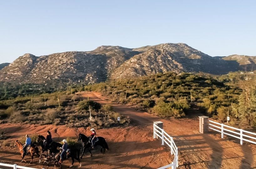 horse property for sale ca