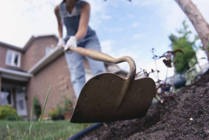 5 Ways to Spruce Up Your Midsummer Garden