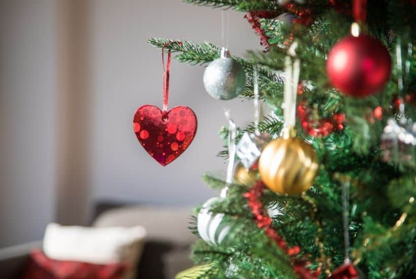 Check out these helpful tips on How To Choose The Perfect Christmas Tree. Choosing the family Christmas tree is fun for everyone. Follow these tips to ensure your tree lasts throughout the holiday season. #christmastree #christmasdecorations #christmasornaments #farmhousechristmas