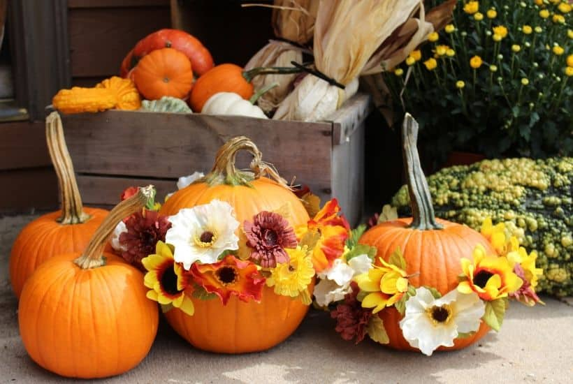 Get creative with your fall front porch decor this year. These festive no-carve flower pumpkins are so pretty and so easy to make. These pumpkin flower arrangements are so welcoming.