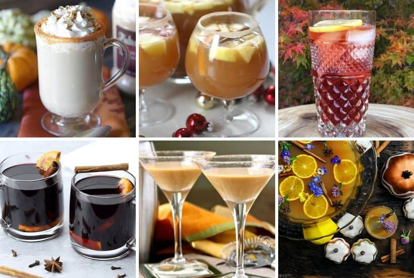 Plan your perfect Thanksgiving Day menu. From appetizers to dessert and the main dish in between your Thanksgiving dinner will be a success with one or more of these delicious 101 Best Thanksgiving Recipes. #Thanksgivingrecipe #maindish #thanksgivingsidedish #desserts