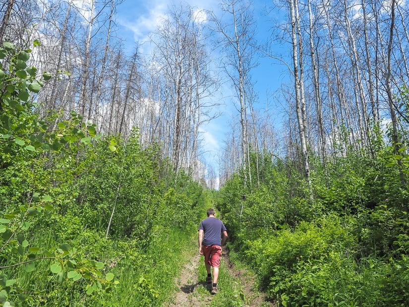 Man walking along an ATV trail in Abasand, Fort Mac, Alberta