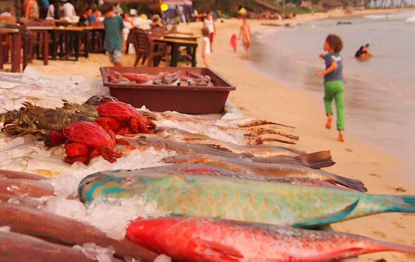 Sri Lanka travel blog fish sri lankan food guide