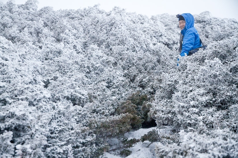 A Taiwanese hiker on Snow Mountain with lots of snow