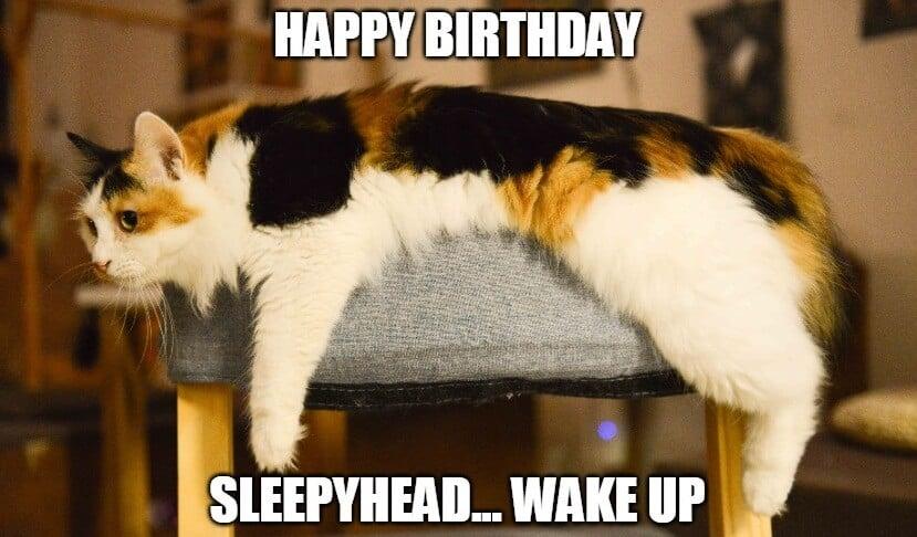 sleepyhead birthday meme