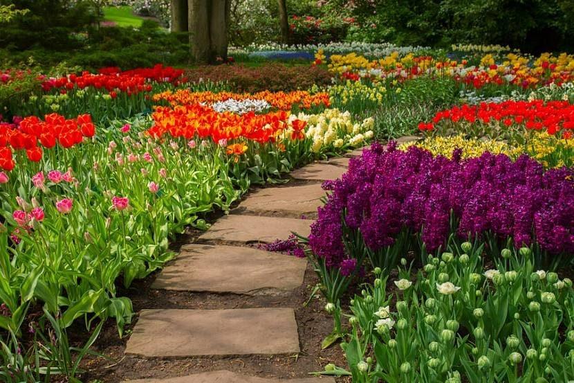 Красивые садовые дорожки из бетона: пошаговая инструкция
