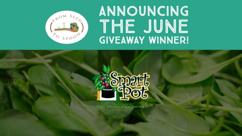 June winner announcement