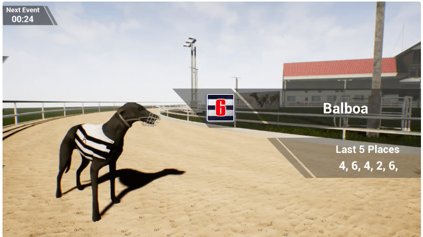 Virtual-Greyhound-Racing