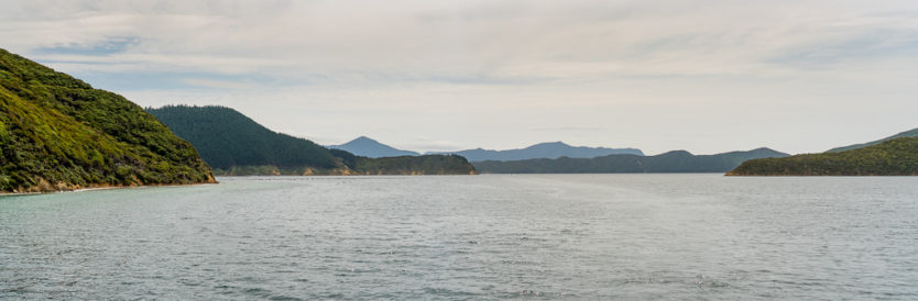 queen charlotte sound mail boat cruise top thing to do in picton new zealand