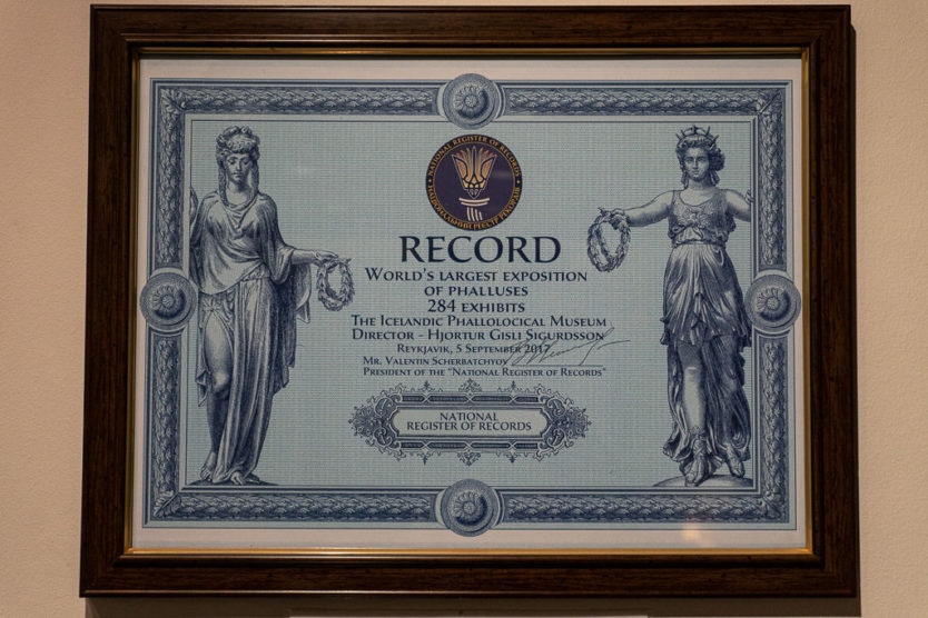 Certificate for the record for world's largest exposition of phalluses at 284 exhibits in the icelandic phallological museum