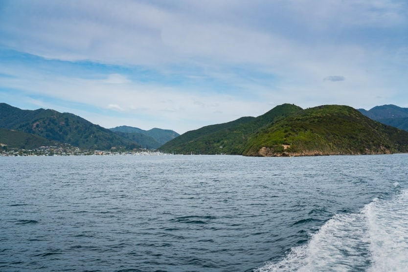 waikawa in the distance on the queen charlotte sound mail boat cruise