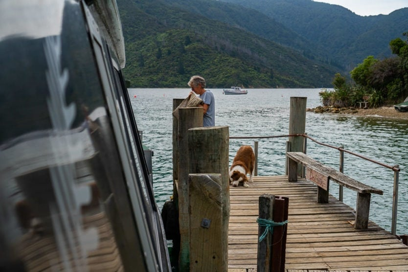 dog on dock with treat from the beachcomber mail boat cruise and owner receiving her mail