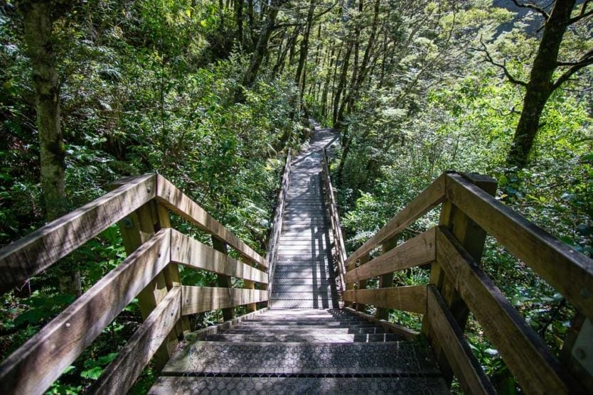 stairs on the trail to devils punchbowl falls