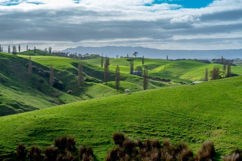 visiting hobbiton in new zealand - countryside drive