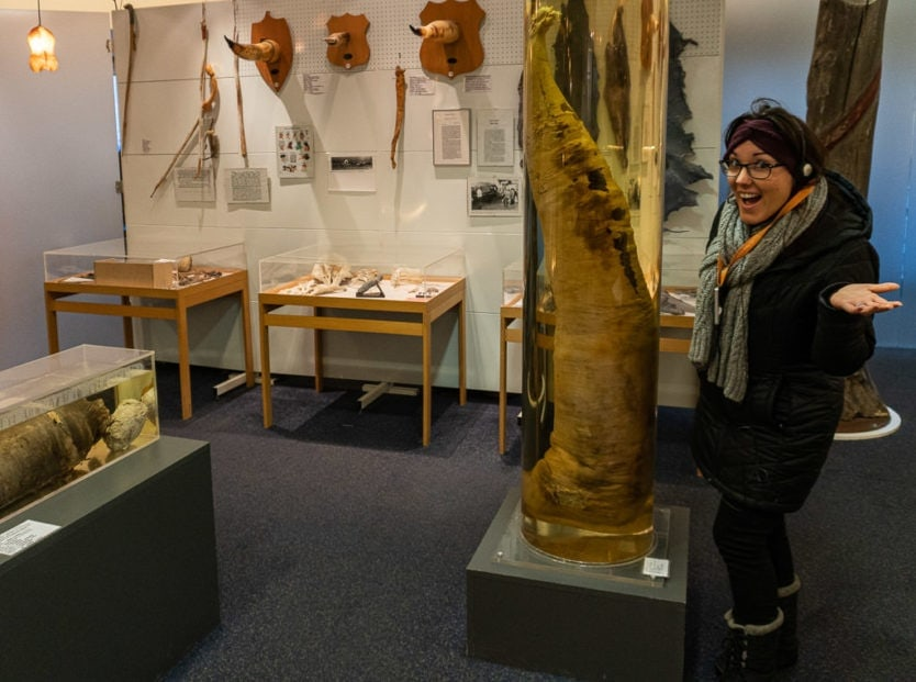 Brooke next to a display at the icelandic phallological museum