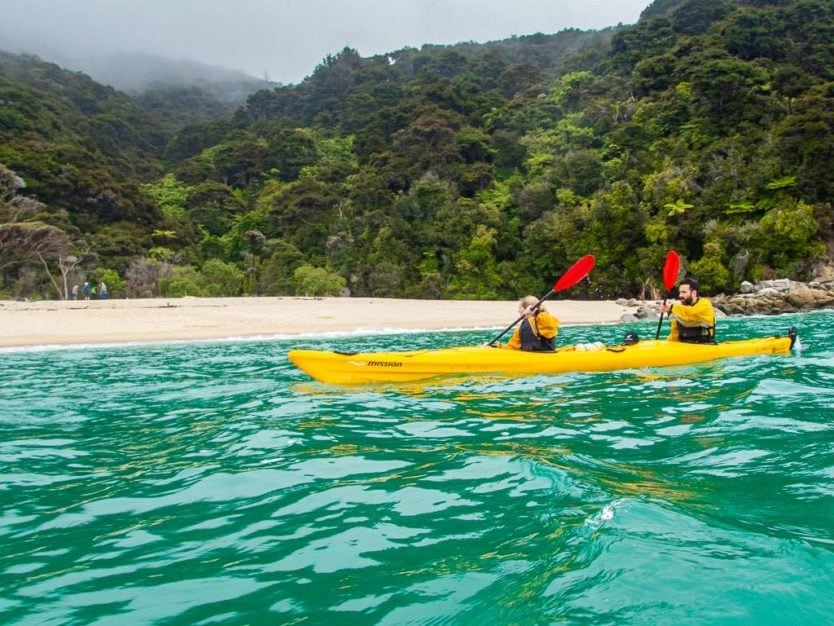 couple kayaking along the sandy shoreline of mosquito bay in abel tasman national park