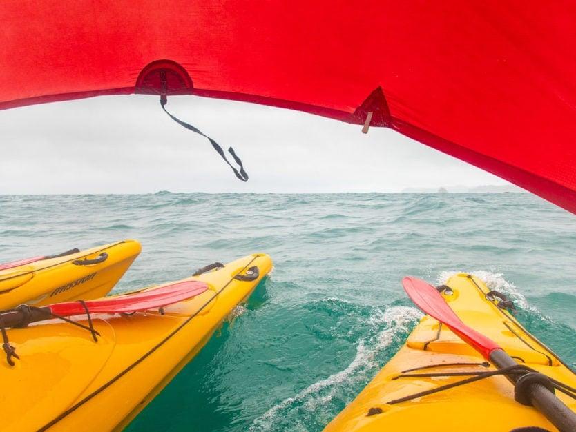 kayak sailing during our abel tasman kayak tour