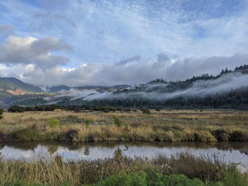 whispy clouds over abel tasman national park tree's on our way to our abel tasman kayak trip