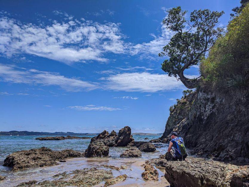 tepaka point beach near russell bay of islands new zealand