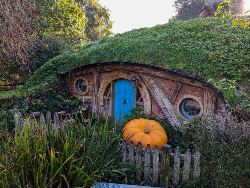 visiting hobbiton in new zealand - hobbit holes