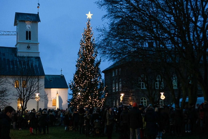 reykjavik christmas markets tree lighting event