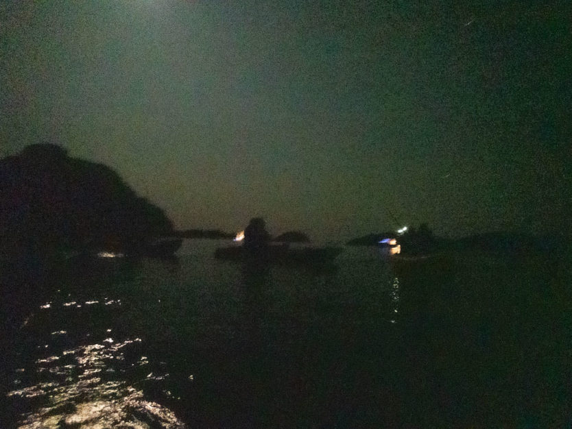 night kayaking in bay of islands on the rock overnight cruise boat
