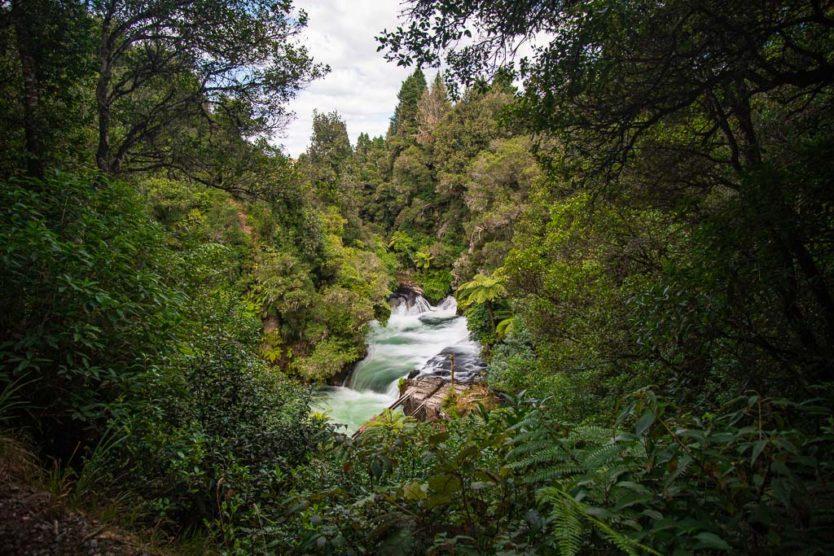 okere falls near rotorua