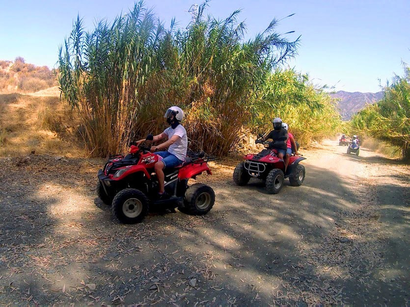 4 quads riding amongst greenery on a lovely terrain