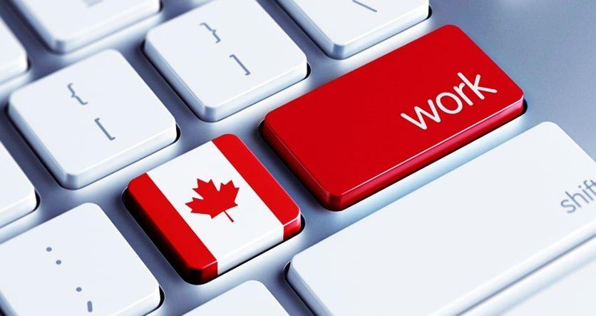 dicas para ser programador no Canadá