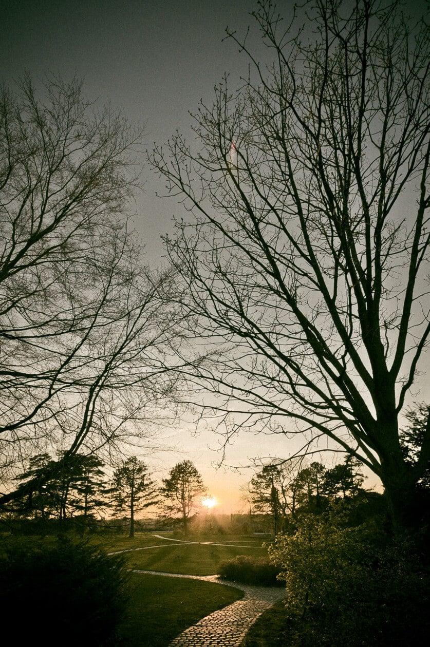 April, 2011: Solnedgang set fra Bispebjerg Kirkegård.