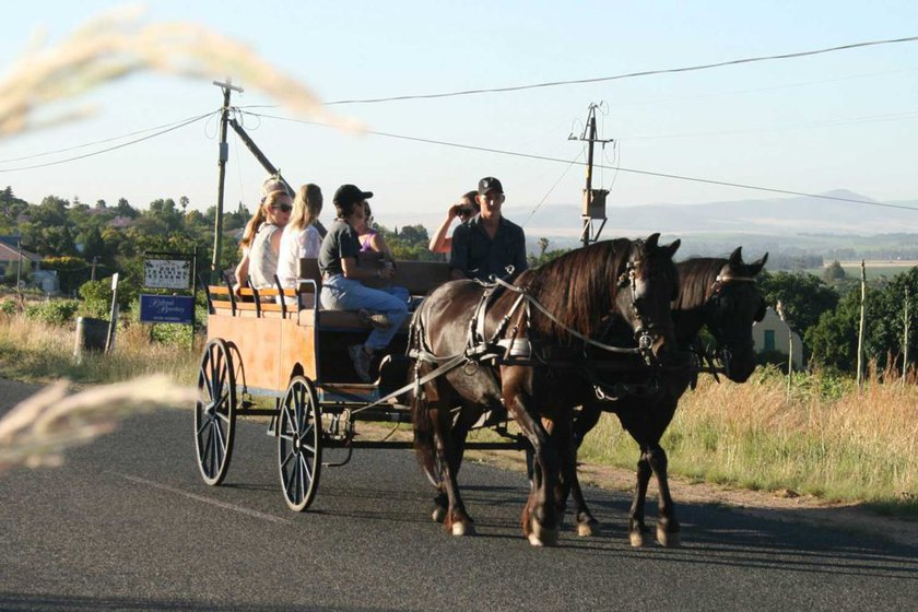 wine-valley-horse-cart