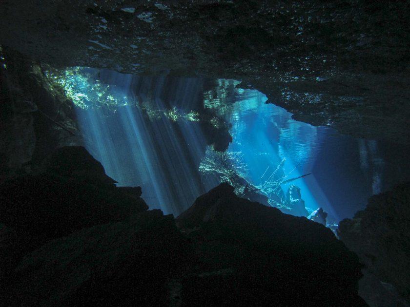 Diving in Cenote Chac Mool, Yucatan Peninsula, Mexico