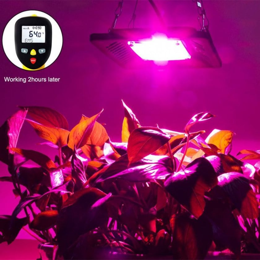 Canagrow cob led grow light - photo 2