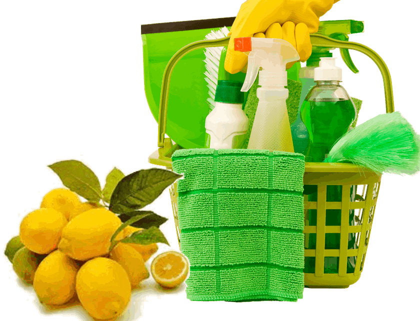 Pure Green Cleaning Services