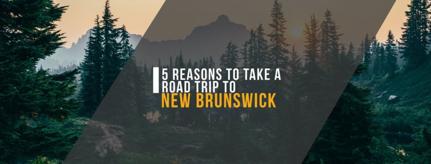 5 Reasons to Take a Road Trip to New Brunswick